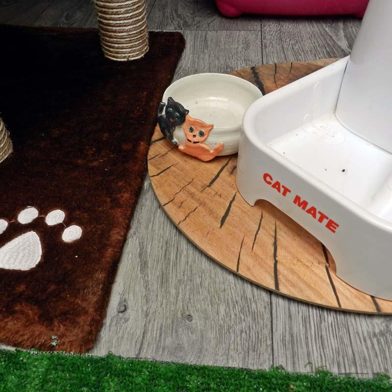 Hranilice i pojilice za mačke